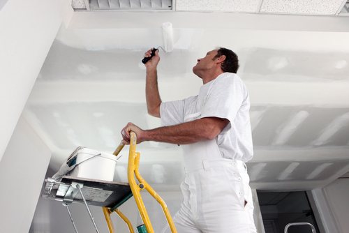 Auckland painters
